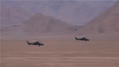陆军第76集团军某陆航旅:跨昼夜实弹射击 看战鹰大展神威