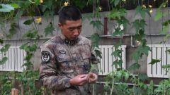 【影像志】高原种植能手王超:战友吃得开心是我最大的心愿