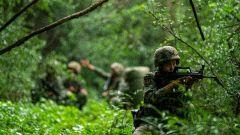 實彈檢驗!帶你走進偵察兵引導火力打擊訓練現場