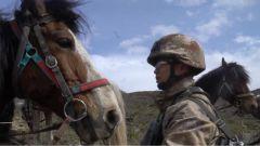 军马受惊,指导员突然摔马!这为第一次巡逻的新兵提了一个醒