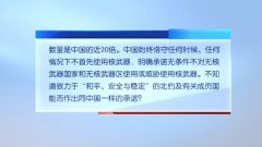 中国使团就北约峰会公报涉华内容答记者问 中方:诋毁中国和平发展 冷战思维延续