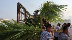 海軍航空兵西沙某部:浩瀚南海寫忠誠 永興島上添新綠