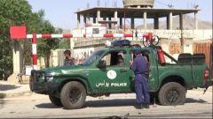 阿富汗安全部隊打死193名塔利班成員