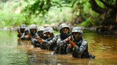 偵察兵的雨林迷蹤:陸軍第75集團軍某旅武裝滲透破襲演練掠影