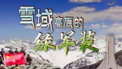 《军事纪实》20210727《雪域高原的绿军装》下集